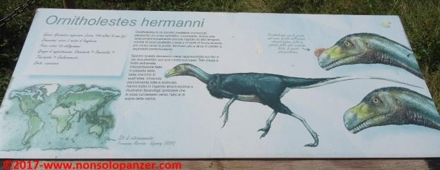12 Dinosauri in Carne e Ossa
