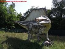19 Dinosauri in Carne e Ossa