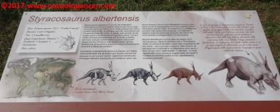 20 Dinosauri in Carne e Ossa