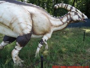 28 Dinosauri in Carne e Ossa