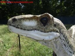 33 Dinosauri in Carne e Ossa