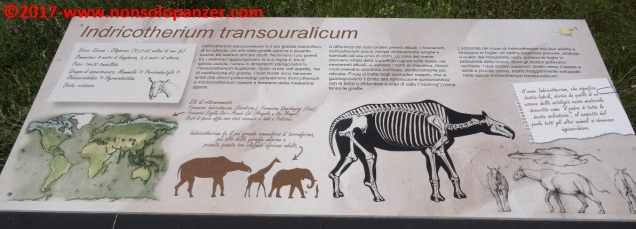 48 Dinosauri in Carne e Ossa