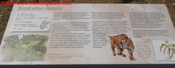 51 Dinosauri in Carne e Ossa