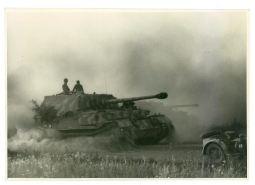 55 Panzerjager Tiger (P)