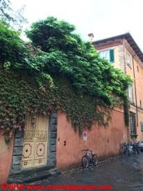 10 Lucca 2017
