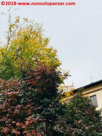 15 Lucca 2017