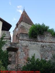 10 Sant'Ambrogio di Torino
