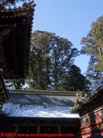 154 nikko toshogu