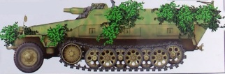 14 Sdkfz. 251-9 Early Type