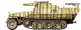 16 Sdkfz. 251-9 late Type