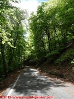 054 Passo del Cuvignone