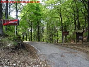 059 Passo del Cuvignone