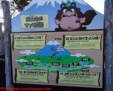 027 Kawaguchiko Ropeway