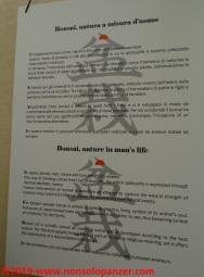 16 Raduno Internazionale Crespi - Bonsai