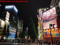 07 Akihabara 2019