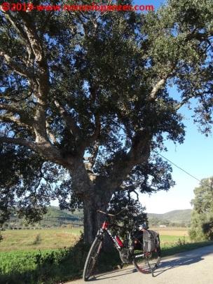 14 Castiglione-Punta Ala Primo Giorno