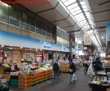11 Satake Shopping Street