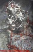 18 Masamune Shirow Intron Depot 10 BloodBard