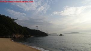 62 Oshima Island